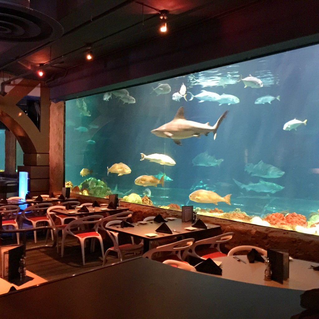 8 Underwater Restaurants You Should Have Dinner In! Picture 4